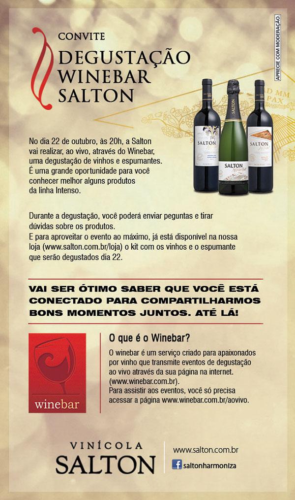 winebar-saltonintenso