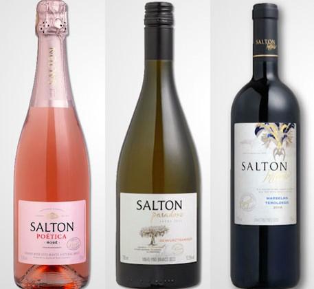 Bons vinhos da Salton por menos de R$ 30 apresentados no WINEBAR