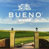 Quer saber mais sobre os vinhos do Galvão Bueno? Acompanhe hoje a degustação online com o enólogo Roberto Cipresso no WINEBAR!