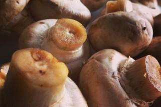 Menu de Baco – Verão – Quiche de Cogumelos